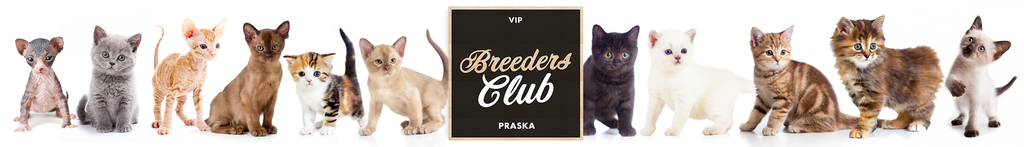 Breeders Club